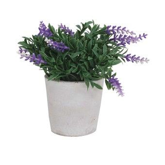25017613-home-decor-garden-accessories-----artificial-trees-01