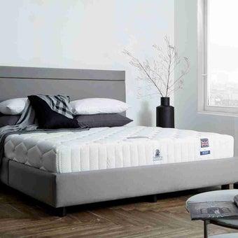 ที่นอน ฟูก ที่นอนโฟม Dunlopillo : SB Design Square