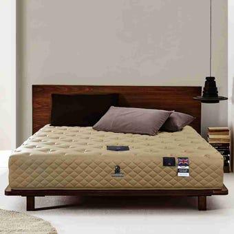 ที่นอนยางพารา ที่นอน ฟูก สีน้ำตาล Dunlopillo : SB Design Square
