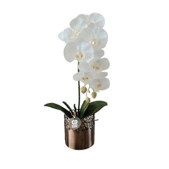 KDD ดอกไม้ประดิษฐ์ #A013ฟาแลนนอปซิสสีขาว1