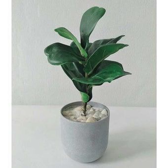 KDD ต้นไม้ประดิษฐ์ #A031 ไทรใบสักจิ๋ว สีเขียว1